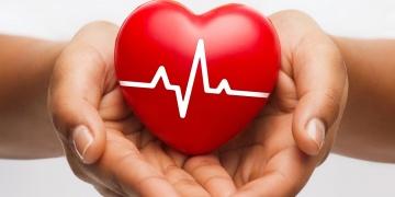 Desatero pro zdravé srdce a cévy
